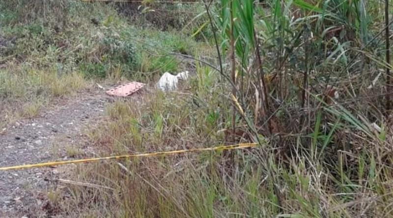 Dos cuerpos sin vida fueron hallados en el Cerro de la Bandera