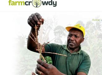 Farmcrowdy extends to Jos: Changing the face of Agriculture one city at a time