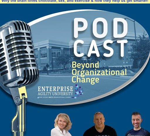 Beyond Organizational Change – Podcast (Ep 03)