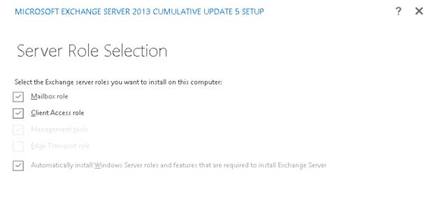 cu5-server-role-selection