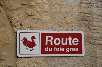 France Sarlat 2015-1