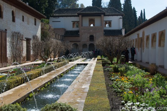 Long rectangular pools with fountains