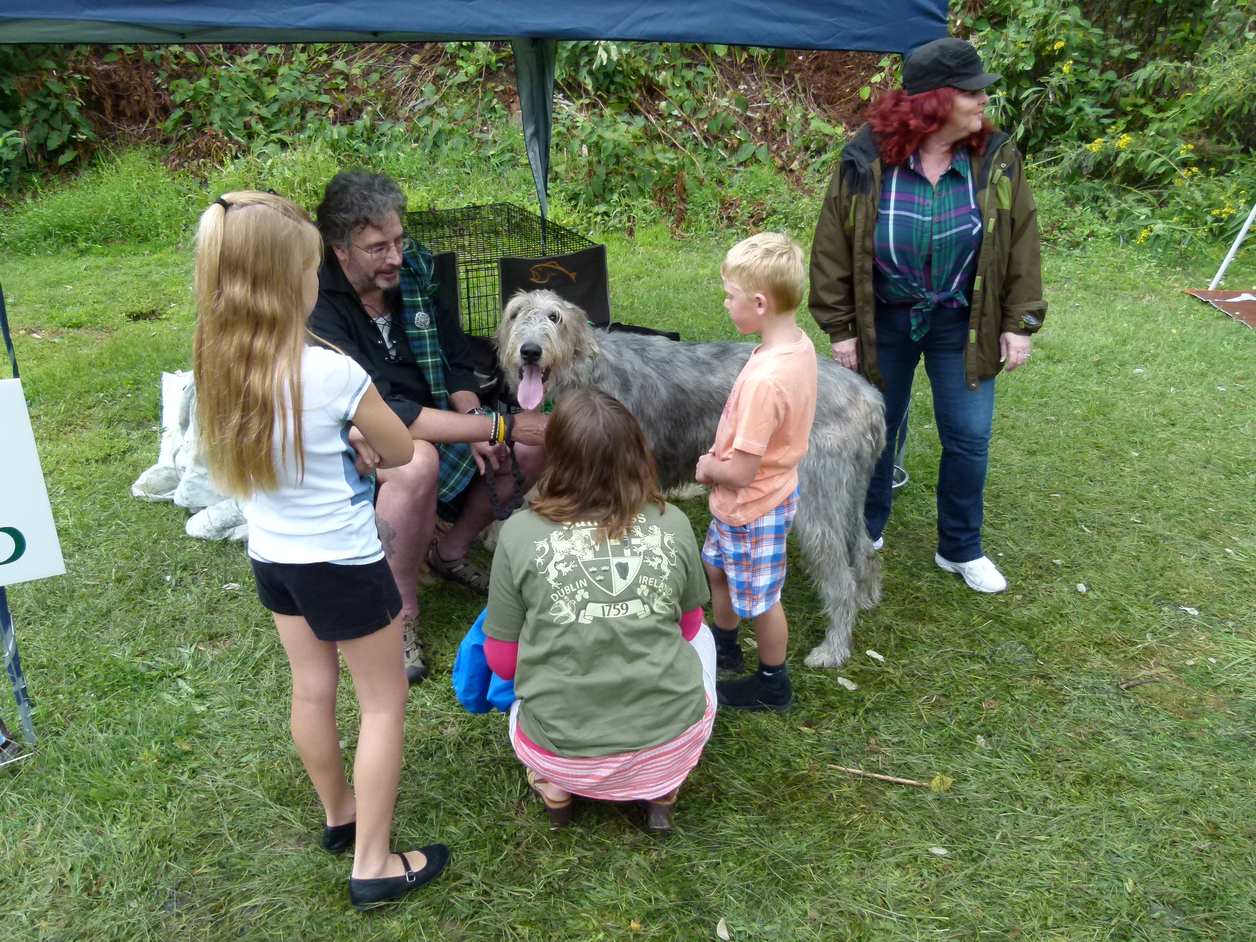 Irish wolfhounds owner Joel Black offers Murphy to the kids for petting.