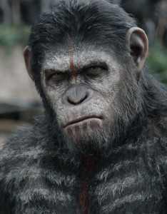 Caesar (Andy Serkis) is smarter than the average chimpanzee and he does not suffer fools gladly.