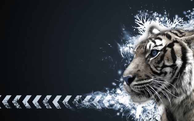 Tiger Vector Widescreen