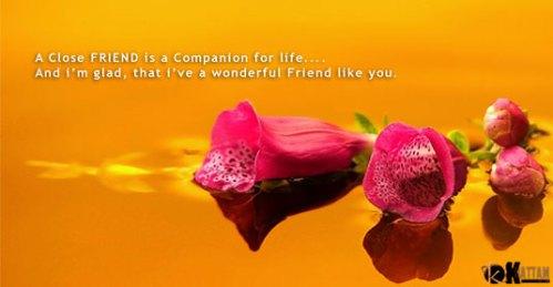 companion for life