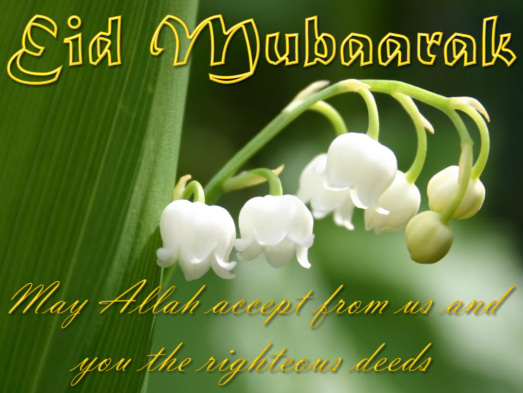 20 eid ul fitr 2015 post cards greeting cards and e cards you to download them and send these special eid greeting messages to all your friends and family and other muslim brothers and sisters around the world kristyandbryce Images