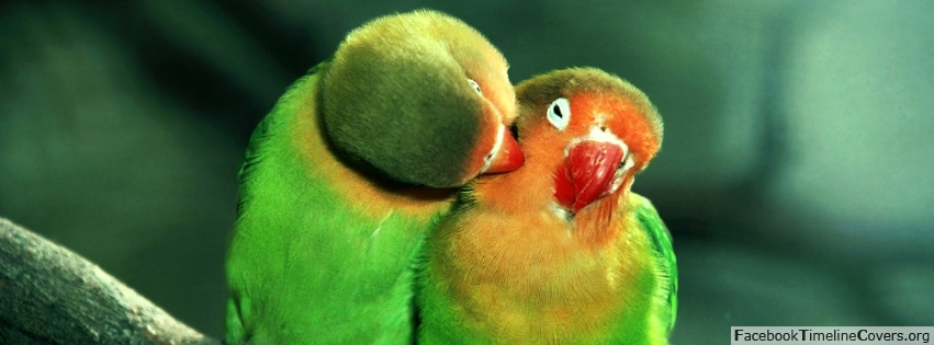 Beautiful Cute Couple Hd Wallpapers 25 Cute Cover Photos For Your Facebook Profile