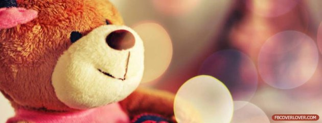 cute teddy bear facebook cover pic