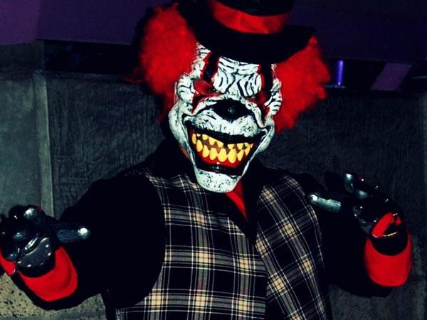clown animal