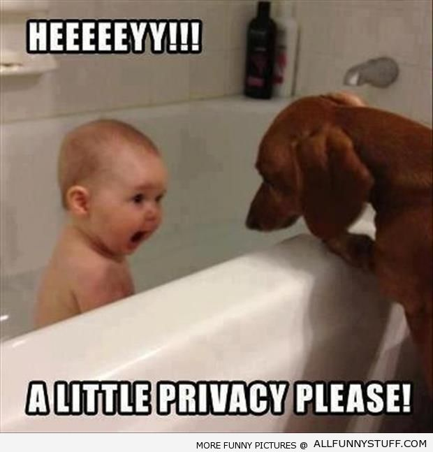 40+ Best Cute Images Of Funny Baby Memes | EntertainmentMesh