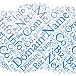 Domain History