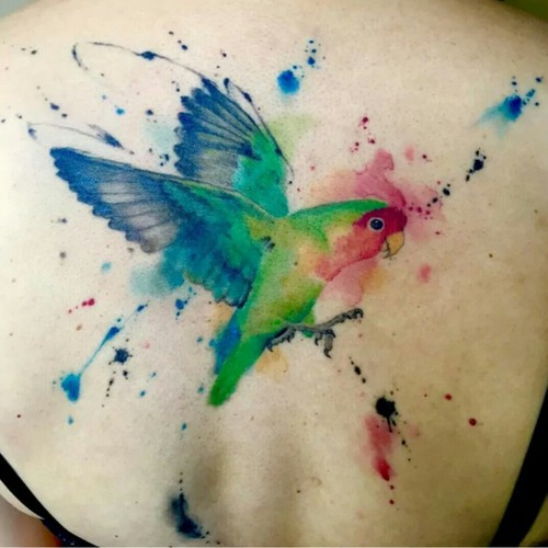 cute parrot watercolor tattoo