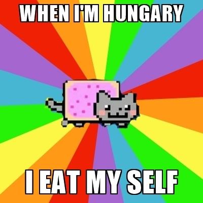 cute-funny-Cat-meme-3