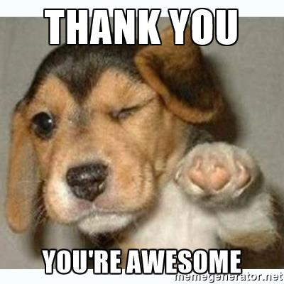 Images Of Thank You Showing Dogs