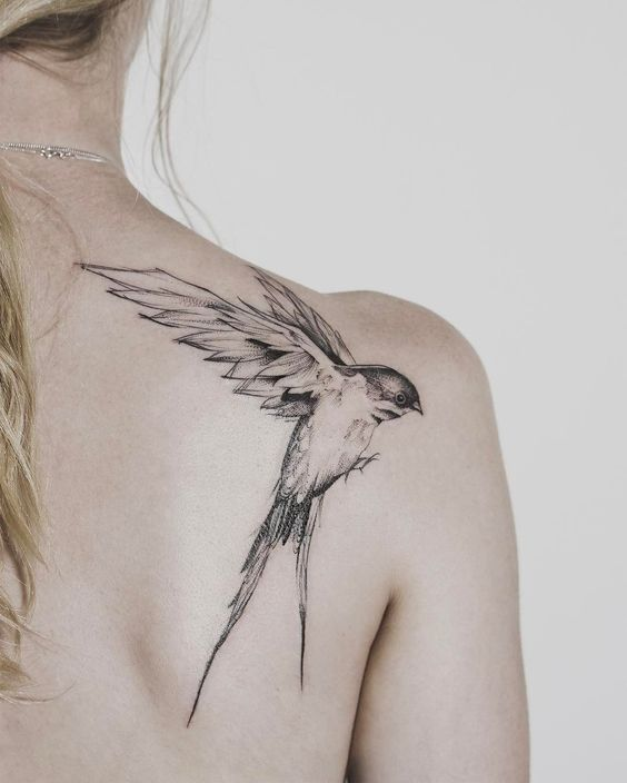realistic swallow tattoo on back shoulder for women