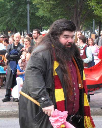 hagrid harry potter halloween men costume ideas for long hair