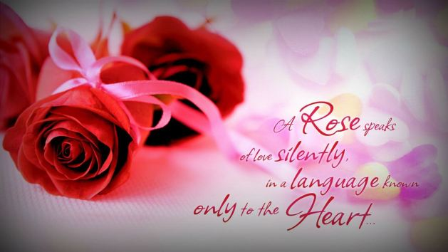beautiful love quotes about rose flower