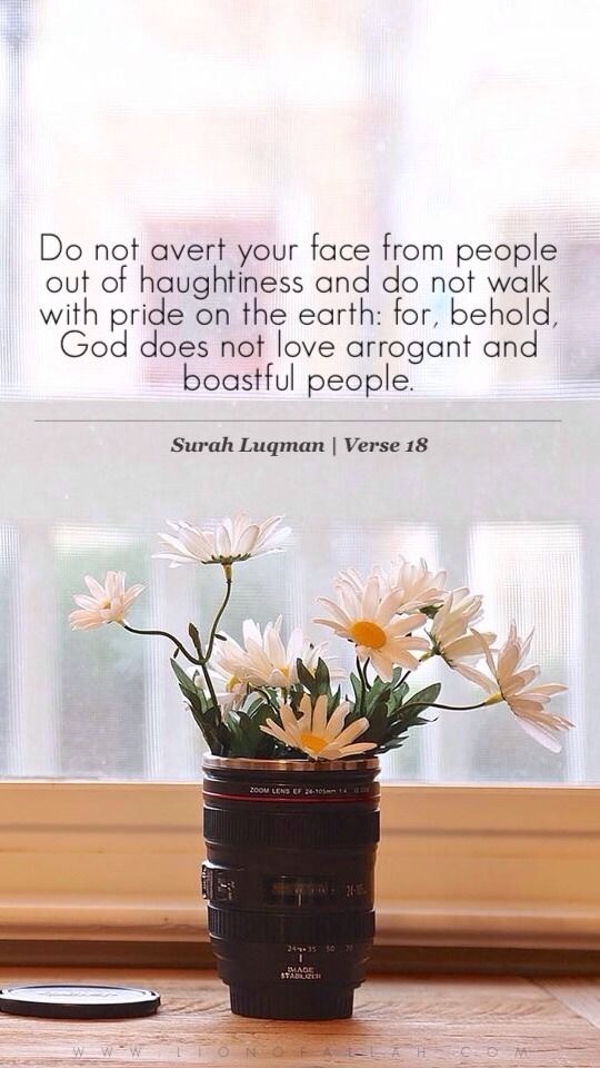 Quran quotes from Surah Luqman