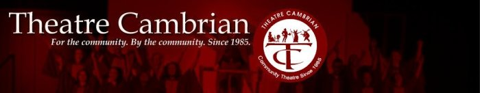 Image result for theatre cambrian