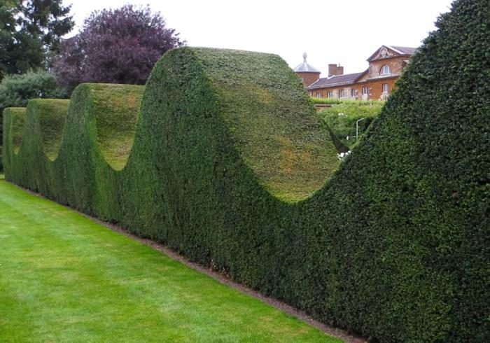 The formal rose garden, Houghton Hall