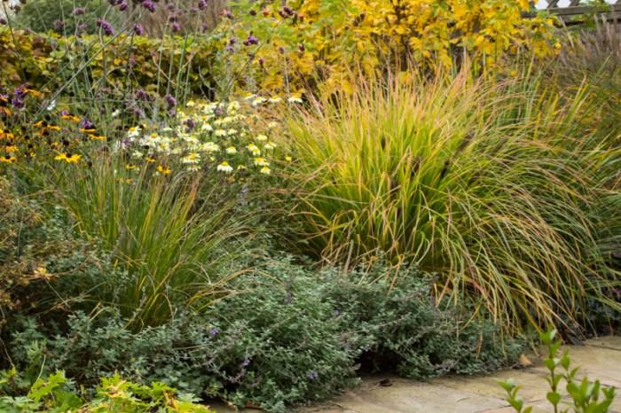 Front garden in Suffolk