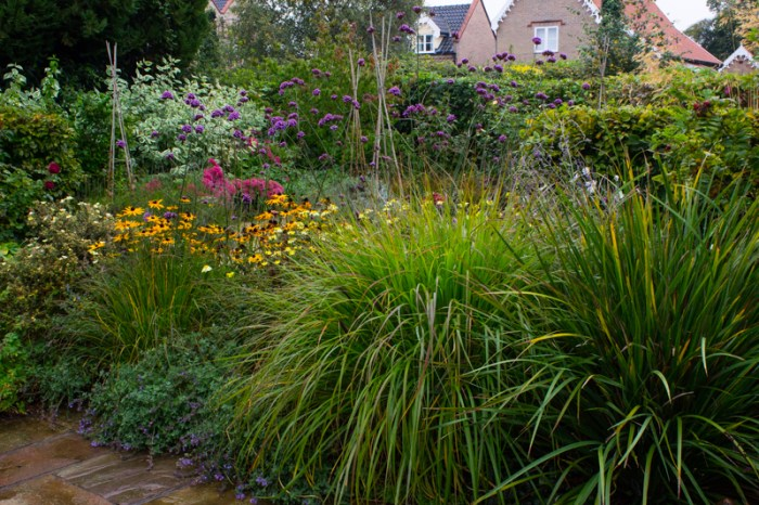 The front garden in the evening light
