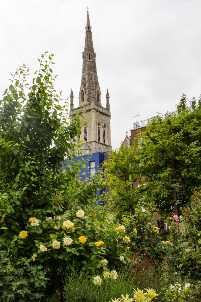 Roses in Cable Street Gardens