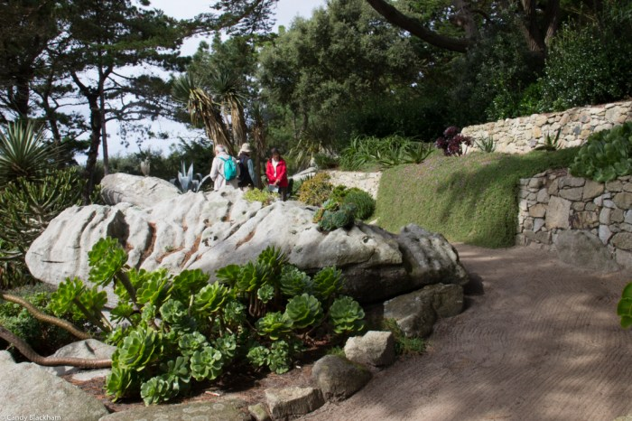 The Cactus garden in the Georges Delaselle Gardens
