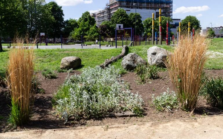 Lower Pepys Parks
