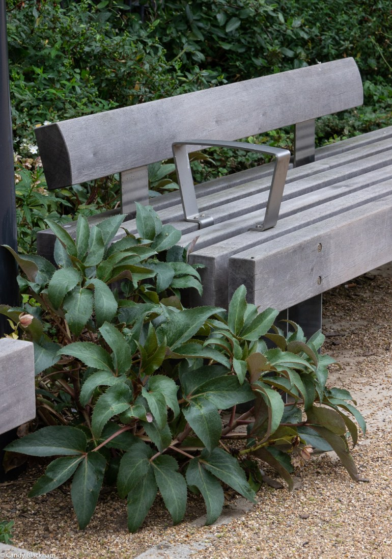 Interesting bench in the park