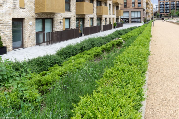 Surrey Canal Linear Park in Lewisham (Deptford)