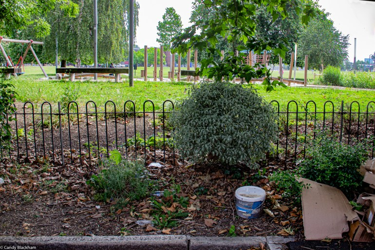 Neglected borders of Fordham Park in the middle of Childeric Road