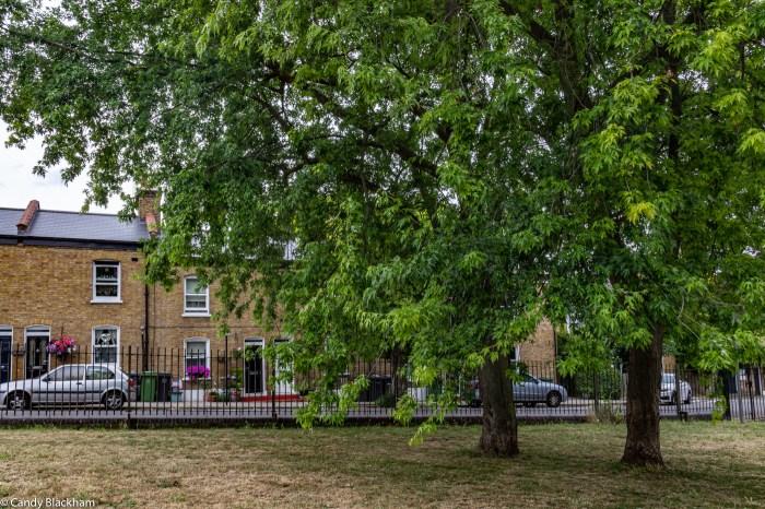 Friendly Gardens in Lewisham