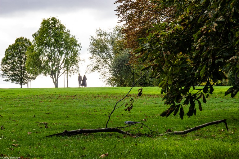 Hilly Fields Park in Lewisham