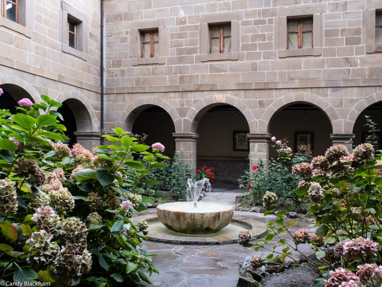 Cloister flowers in the Picos de Europa