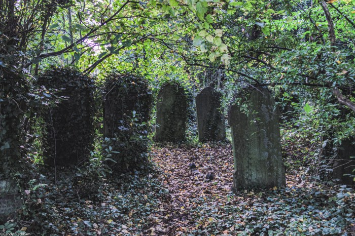 Graves in Brockley Cemetery