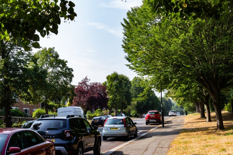 Lawrie Avenue in Sydenham