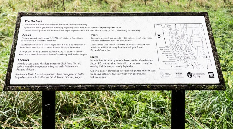 Information Board at The Orchard in the South Field of Ladywell Fields