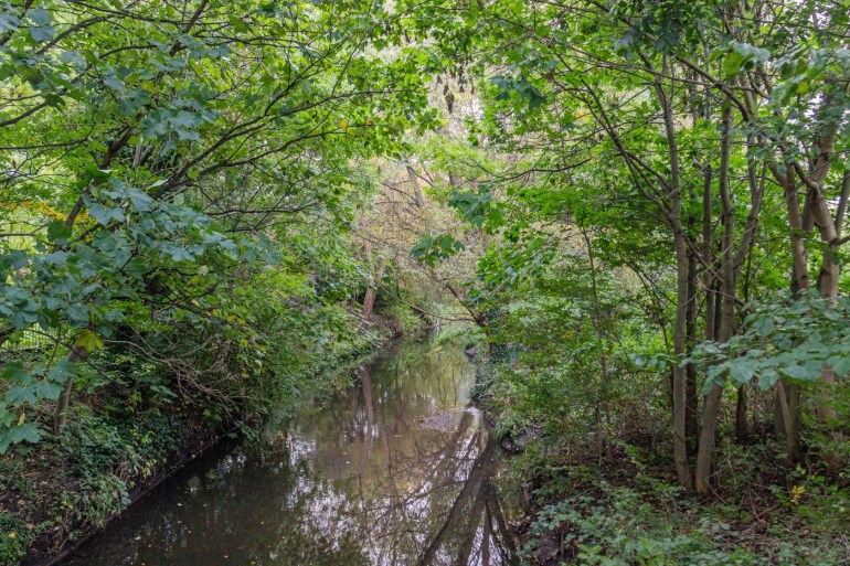 River Ravensbourne in Ladywell Fields