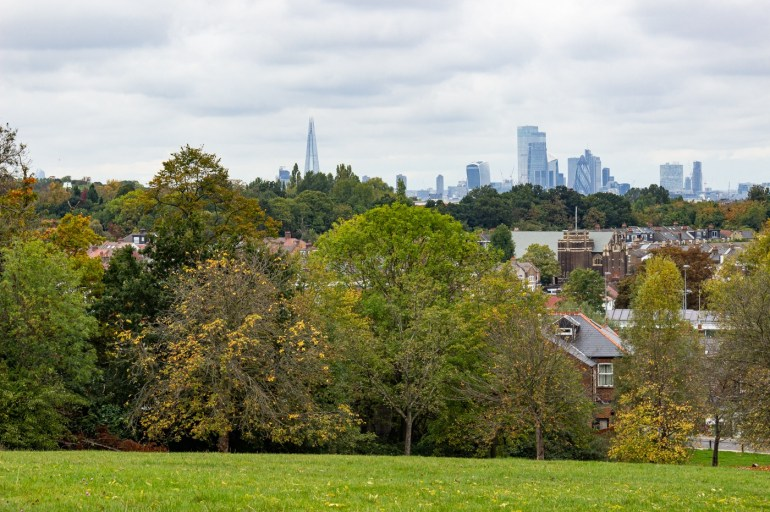 The Shard and the City from Blythe Hill Fields in SE London