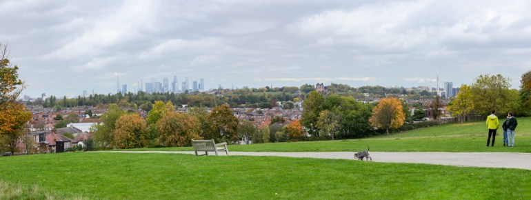 London from Blythe Hill Fields in sE London