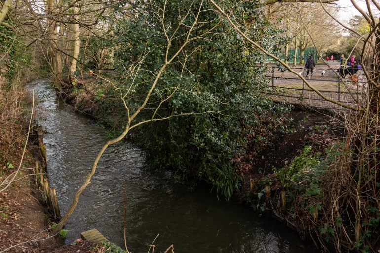 River Quaggy with the dog-walking area on the right