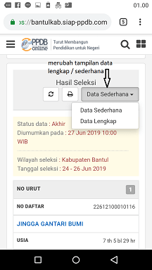 tampilan data hasil seleksi ppdb sd umum