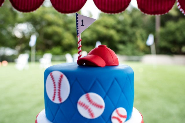 Baseball Birthday Cakes Patriotic Dog Birthday Party At Orlando Canine Country Club In