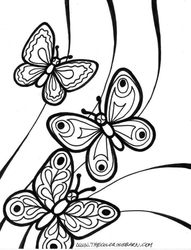21+ Exclusive Photo of Butterfly Coloring Page