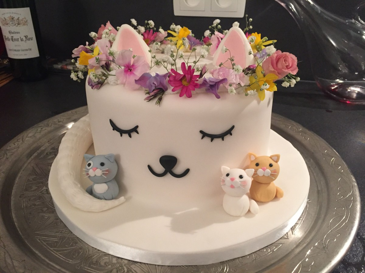 Cat With Birthday Cake Ideas In 2018 Pinterest Party
