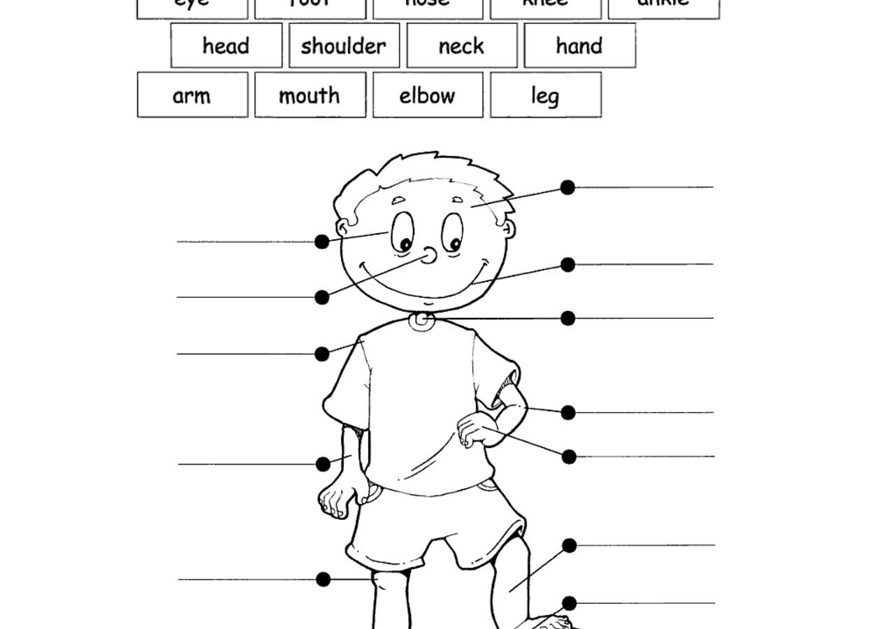 27 Inspired Photo Of Coloring Pages For Kindergarten