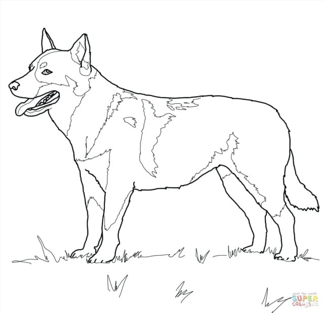 German Shepherd Coloring Pages Collection Of German Shepherd Coloring Sheet Download Them And Try