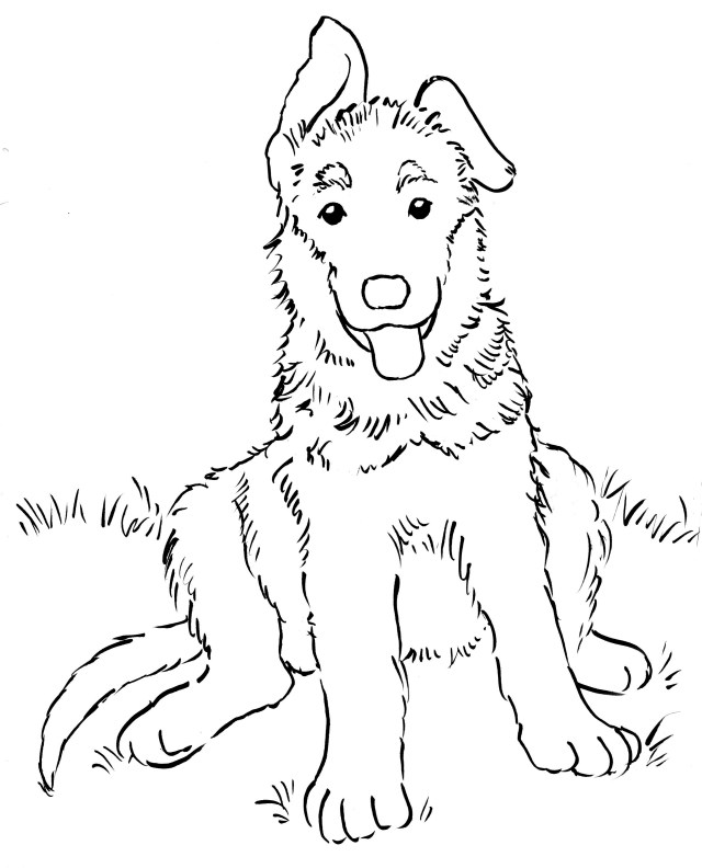 German Shepherd Coloring Pages German Shepherd Coloring Pages Coloring Pages